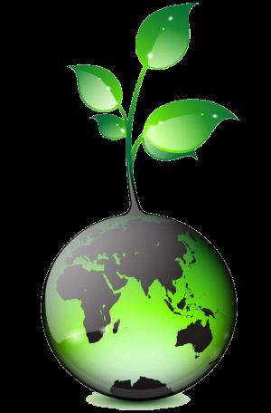 aceni nettoyage industriel propreté entreprise société innovation
