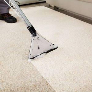 nettoyage moquette aceni entreprise de nettoyage industriel propreté